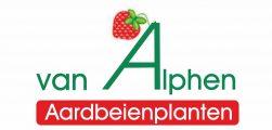 alphen aardbeien